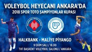 Erkekler Şampiyonlar Kupası Heyecanı Ankara'da!